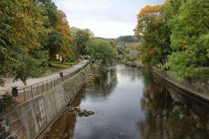 Bild på en vacker kanal och grönskande träd i Uddevalla.